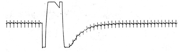fig18.jpg