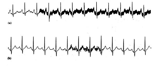 fig19.jpg